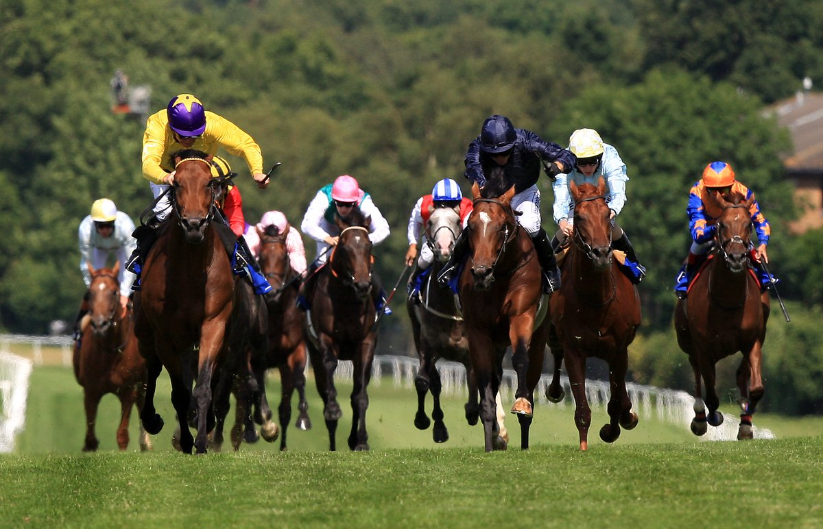 Banker horse betting parlay football betting